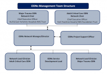 ODN's Team Structure